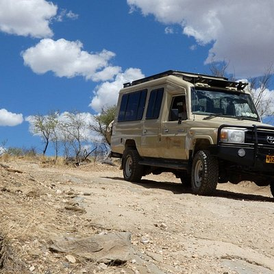 You will go on safari in one of our Toyota Land Cruisers.