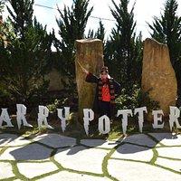 Cafe Harry Potter
