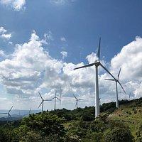たくさんの風車