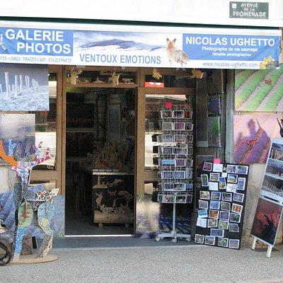 Photographe de vie sauvage du mont Ventoux...