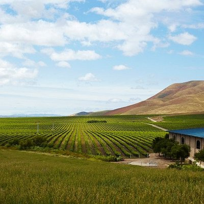Welcome to Cambria Estate Winery & Tasting Room