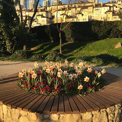 Golet Park