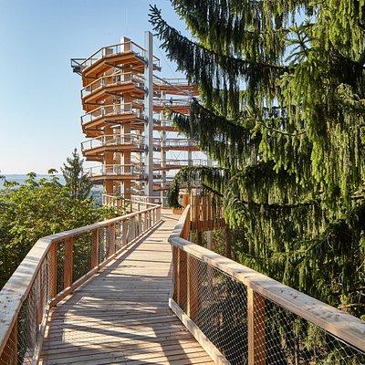 Der 42 Meter hohe Aussichtsturm, der einen atemberaubenden Blick auf die Saarschleife - dem Wahrzeichen des Saarlandes - ermöglicht.