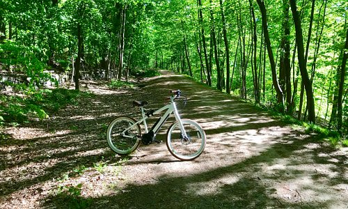 No license or insurance needed. Beautiful trails.