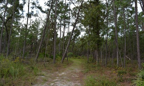 Wide-open spaces on the trail