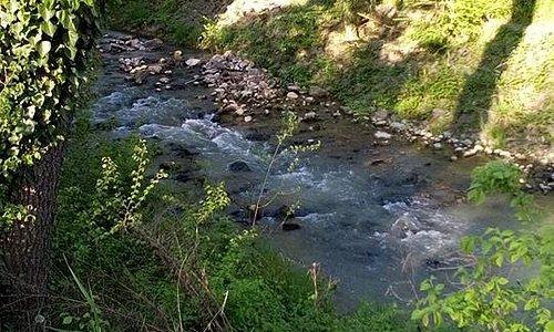 Accanto al mulino scorre il fiume Loncon, che fra mille balzi e cascate ospita una fauna molto ricca.