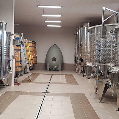 Phase 2 : Poursuite dans les chais de vinification et d'élevage