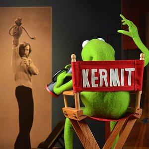 Kermit and Jim