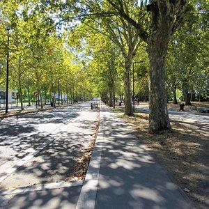 Randonnée pédestre, jogging et vélo dans un milieu calme situé près du quai des Queyries