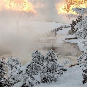 Yellowstone in winter is both snowy and steamy as this visitor walking the boardwalks at Mammoth Terraces can attest to. Mammoth is near Yellowstone's north entrance, the only entrance that is opened to wheeled vehicles in the winter months. PC: NPS/Jacob W Frank