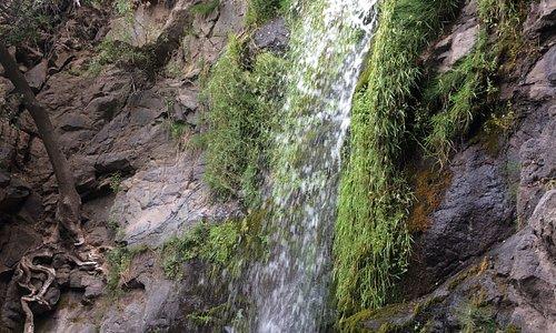 Salto de agua, Los Cipreses