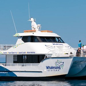 Whalesong Cruises is all abilities accessible.  There are plenty of vantage points over the whole vessel (inside, outside, upstairs, downstairs, front and back).