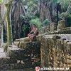 Discover Calakmul México