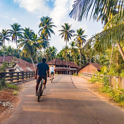 Rivers, coconut trees, kids playing, beautiful village huts. and a lot of cultures. This is what you will see when you join our cycling tours.