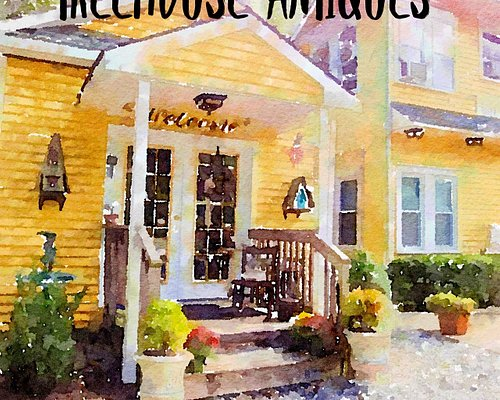 VISIT TREEHOUSE AND FIND A TREASURE.
