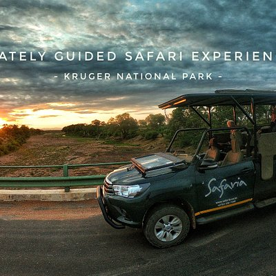 Guests on a Private 5 Day Safari enjoying the sunrise over the Shingwedzi River