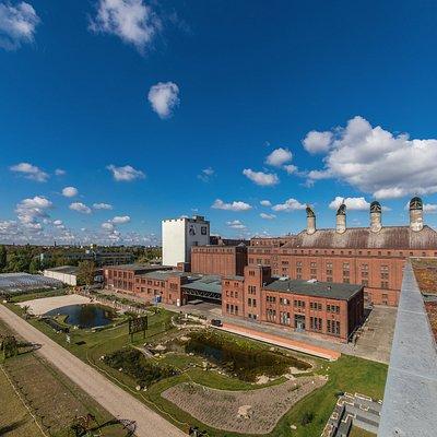 Die vier Darren auf dem Dach der Alten Mälzerei sind das Wahrzeichen der Malzfabrik.