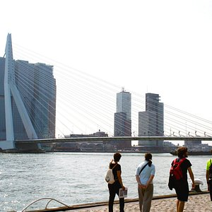Boompies, a nice promenade next to the water with great views of Rotterdam's best-known landmark, the Erasmus Bridge.