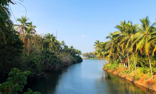View of the backwaters