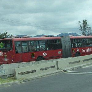 Trans Milenia buses