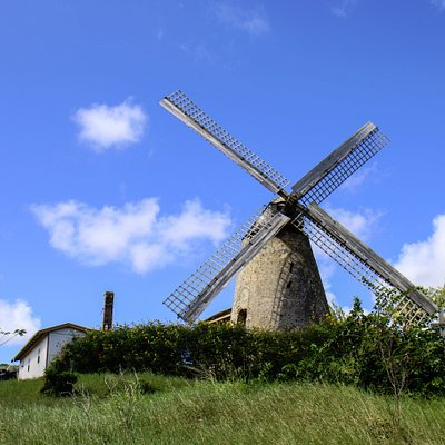 Windmill (front, distant)