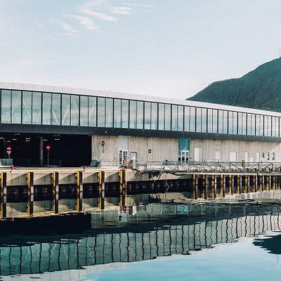 You find Tromsø's Official Tourist Information Centre at Treomsø Port Terminal, Prostneset. Photo: Vegard Stien