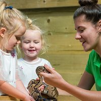 Animal handling sessions