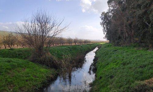 דרדרה מיקומו של קיבוץ אייל ליד כפר סבא לפני המלחמה שכן ליד יסוד המעלה