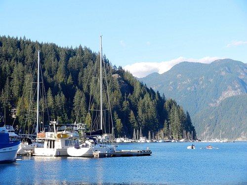 Marina with several sailboats