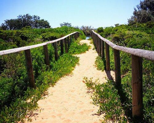 Deep sand on the path.