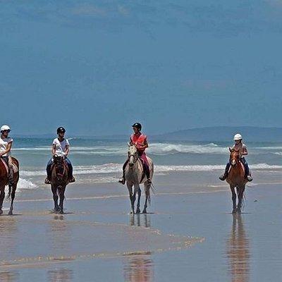 Group Beach Ride