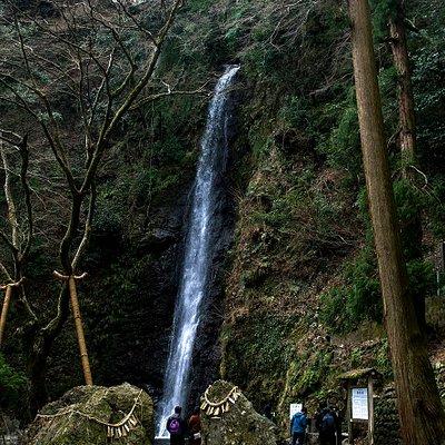 Yoro no Taki (Yoro Falls)
