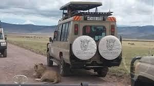 Thrilling Journey To Tanzania