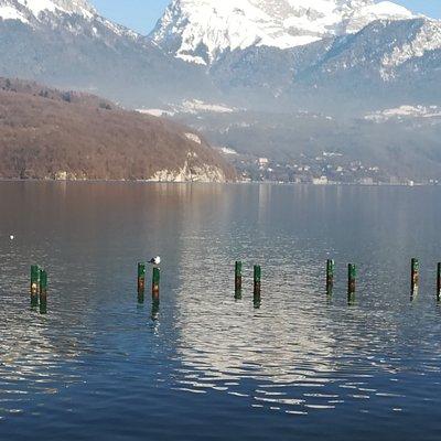 Vue sur le lac depuis les roselières
