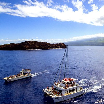 The Four Winds II & the Maui Magic