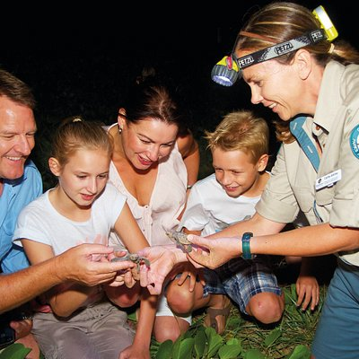 Mon Repos Turtle Encounter is the only ranger-guided turtle encounter available on the east-coast and is instrumental in the research into turtle conservation, specifically the endangered Loggerhead turtles that frequent this beach. Come witness a miracle at the Mon Repos Turtle Encounter and create memories to last a lifetime.