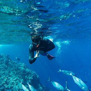 Happy to enjoy an amazing snorkeling experience!  ¡Increíble exeperencia de snorkel!  Foto: Paulo Goa