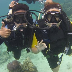 Scuba Dive or snorkel with us.