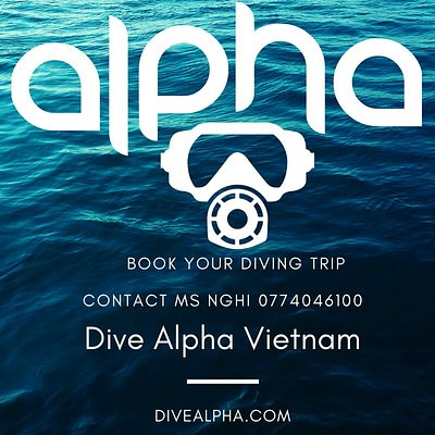 How to book with dive alpha Vietnam