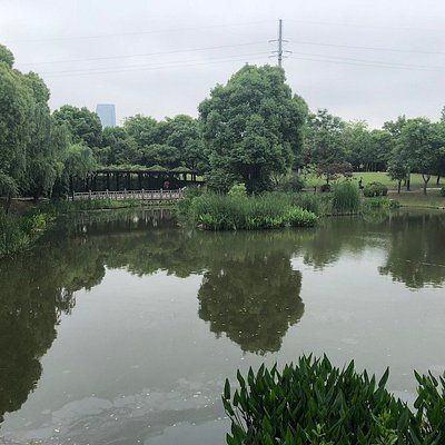 Nice garden view in the Park