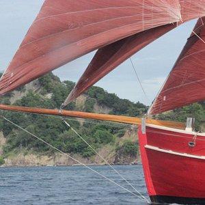 Sailing with Vendia