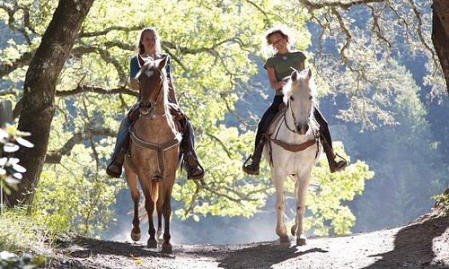 Beautiful horses, beautiful trails, excellent memories