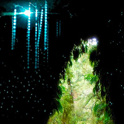 Glow-worm cave Tour Greymouth new Zealand, Cave Entrance