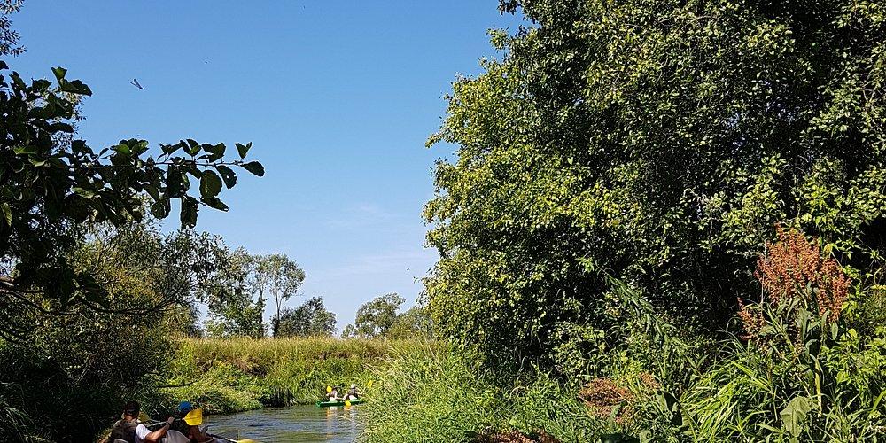 Rzeka Lubaczówka
