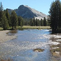 Tuolumne Meadows Bridge - Vista