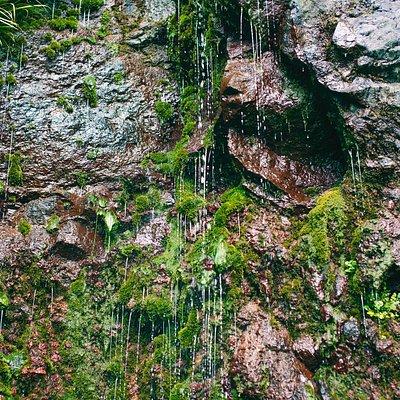細目糸のような滝。