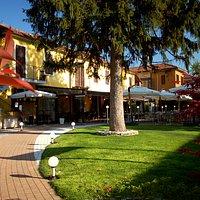 Il ristorante Il Beccofino, a Paderno d'Adda vicino Merate, vi accoglie nel suo grande giardino.
