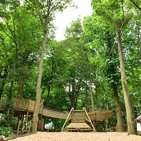 One of the four fabulous adventure playgrounds in Stockeld Park's Enchanted Forest.