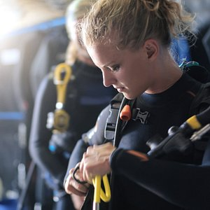 Diver getting ready.
