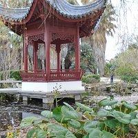 Jardin Botanique. В саду в январе
